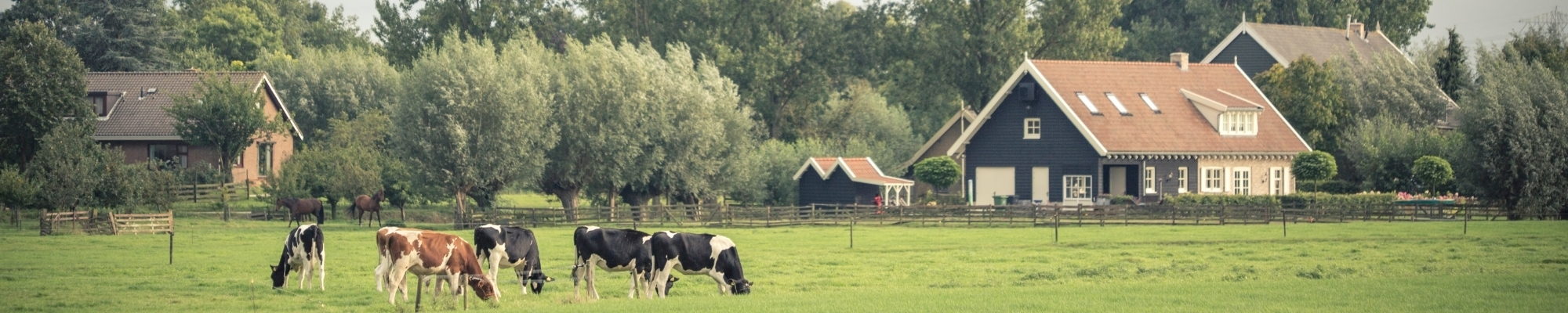 Farm Insurance - a general overview